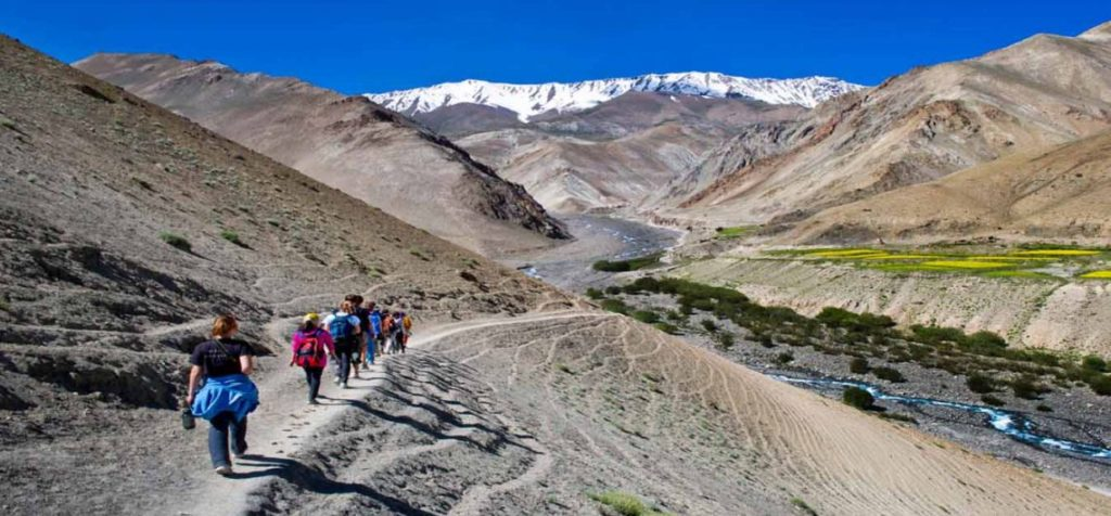 Treks-of-Leh-Ladakh-1140×530