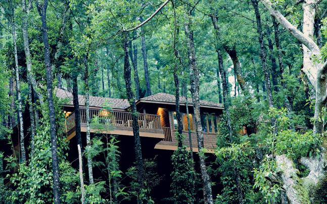 coorg 22